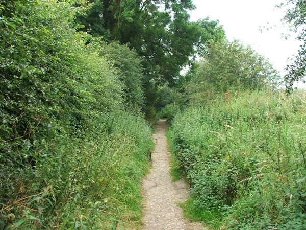 Image, UK, England, Derbyshire, public foot path between Shirebrook and Pleasley Park