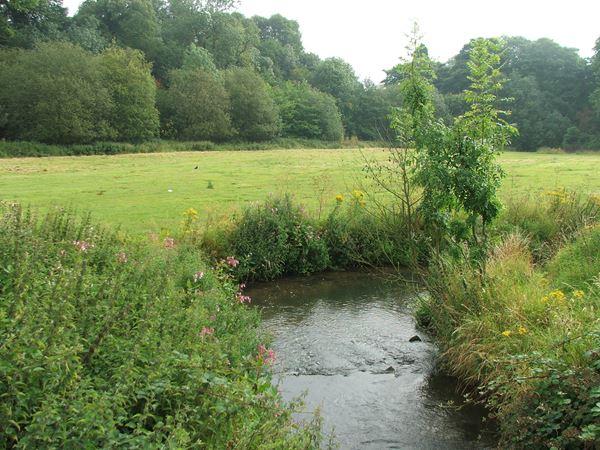 Image, UK, England, Derbyshire, Pleasley Vale