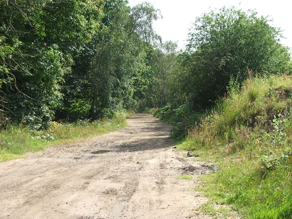 Image, UK, England, Notts, Eakring Road between Mansfield Woodhouse and Sherwood Pine Forest