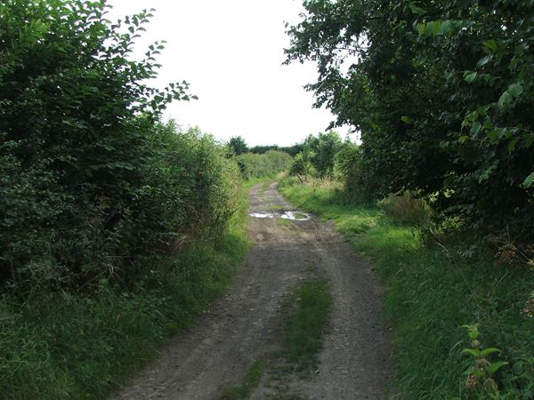 Image,  UK, England, Notts, public foot path between Market Warsop and Sookholme