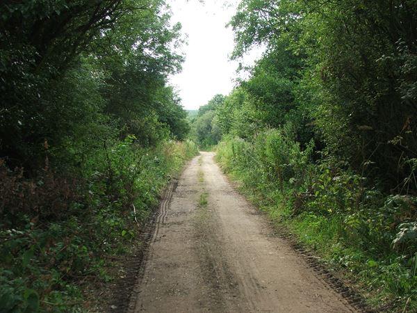 Image, UK, England, Notts, public foot path between Bath Lane Farm and Woodland Farm
