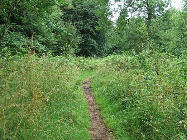 Image, UK, England, Derbyshire, Archaeological Way the Scarcliffe Park