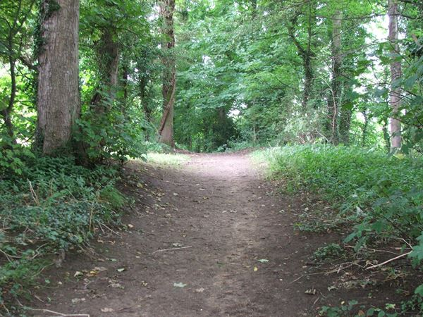 Image, UK, England, Derbyshire, Archaeological Way the North approach to the Scarcliffe Park