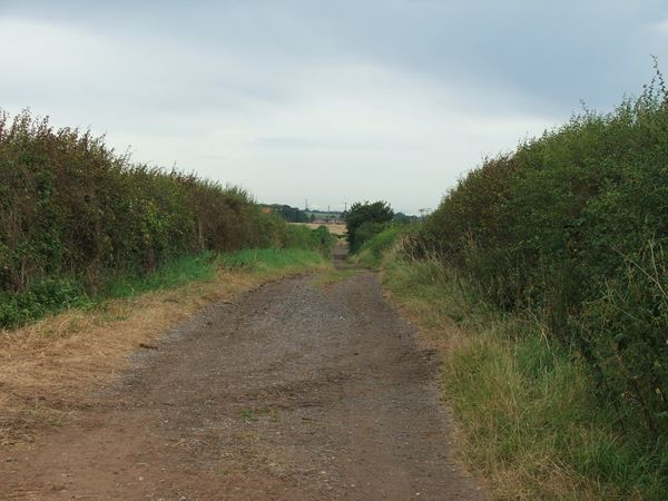 Image, UK, England, Derbyshire, Archaeological Way between Whaley and Frithwood Farm