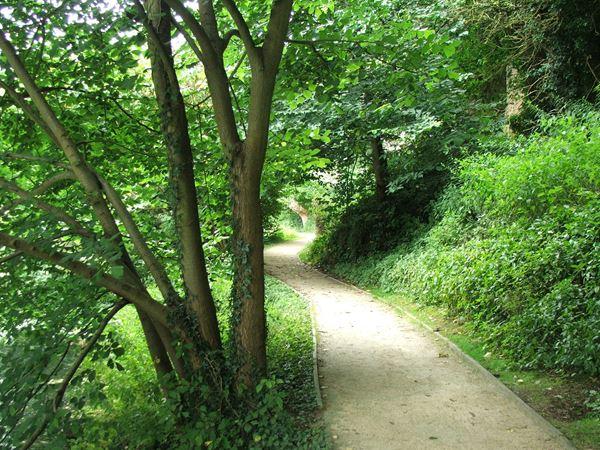 Image, UK, England, Notts, Creswell Crags