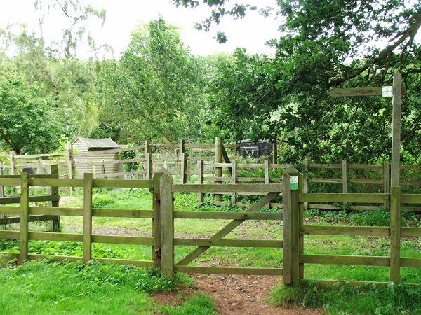 Image, UK, England, Notts, Robin Hood Way between Welbeck Abbey and South Lodge