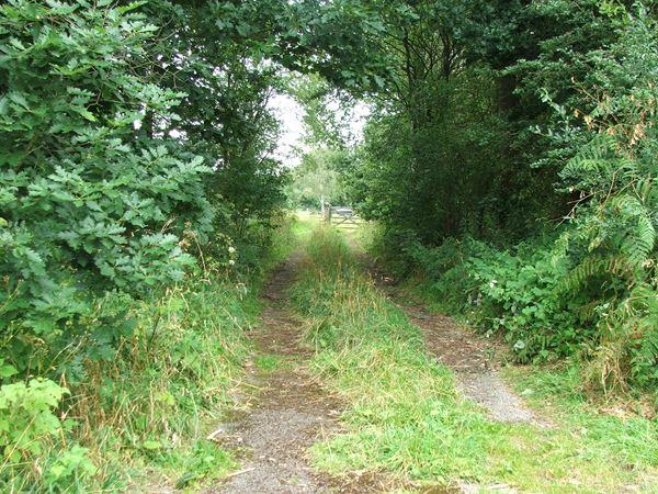 Image, UK, England, Notts, the North West corner of the Clumber Park