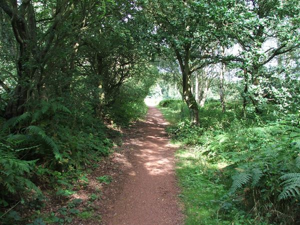 Image, UK, England, Notts, Robin Hood Way (route 6), South West border of the Clumber Park between South and Kingstand Lodges