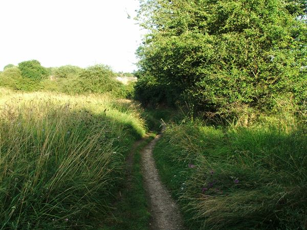 Image, UK, England, Notts, public foot path between Market Warsop and Warsop Vale