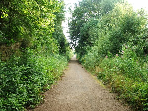 Image, UK, England, Notts, public foot path between Warsop Vale and Shirebrook