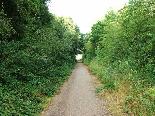 Image, UK, England, Notts, public foot path between Warsop Vale and Shirebrook