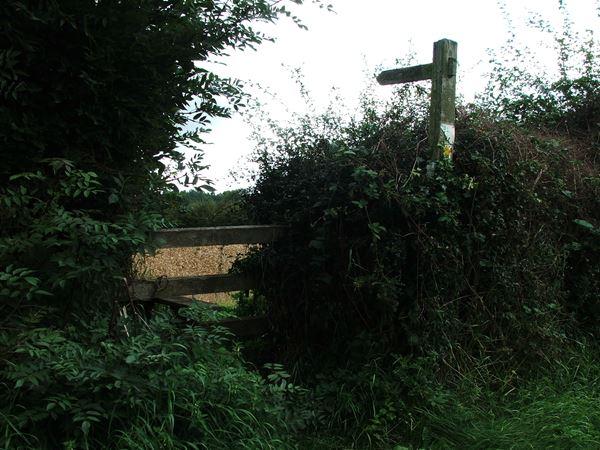 Image, UK, England, Notts, Welbeck Abbey, Robin Hood Way between the Deer Park and Norton