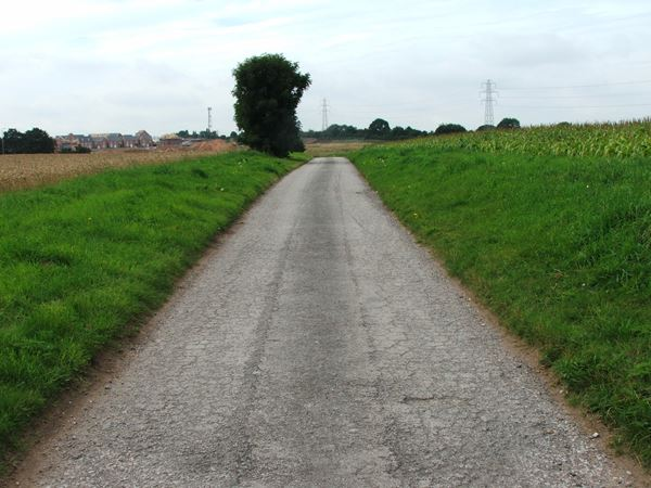 Image, UK, England, Notts, public foot path from Mansfield Wood House to Warren Farm