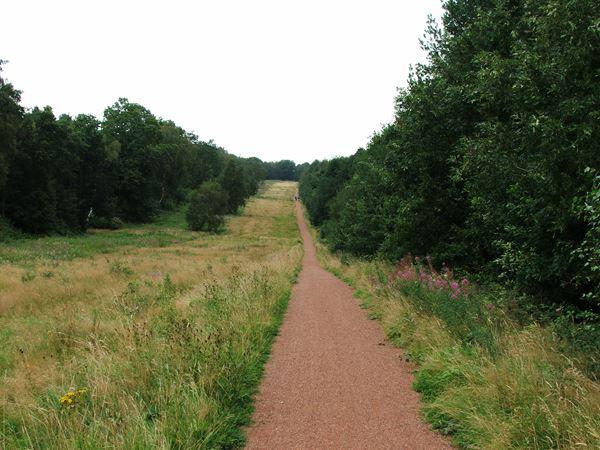 Image, UK, England, Notts, route 6 South West border of the Sherwood Forest