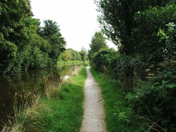 Image, UK, England, Bassetlaw, the East direction on a Cuckoo Way in Worksop