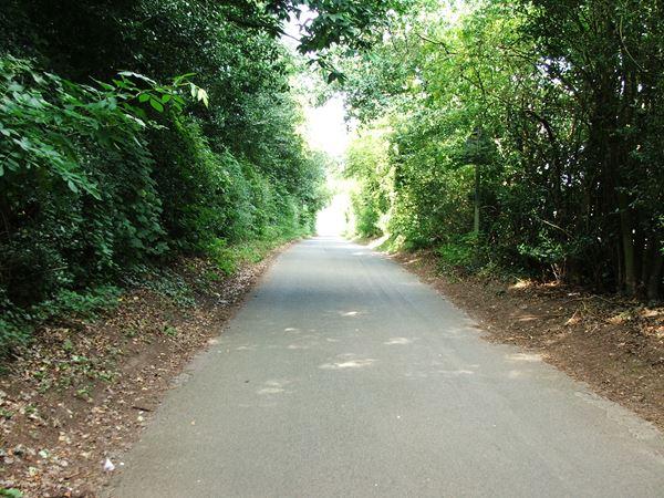 Image, UK, England, Bassetlaw, Old Coach Road near Worksop College