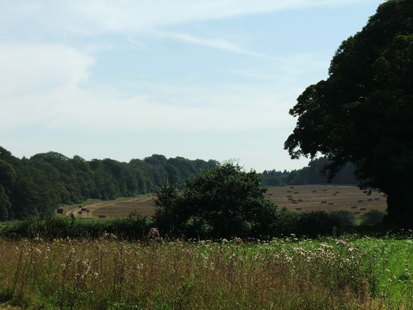 Image, UK, England, Bassetlaw, The North East corner of the Clumber Park