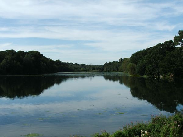 Image, UK, England, Bassetlaw, Clumber Park the East part of the Clumber Lake
