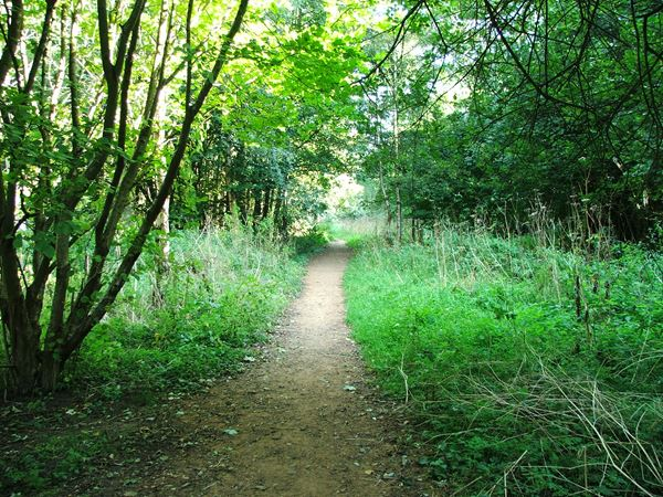 Image, UK, England, Derbyshire, public foot path along Pleasley Vale