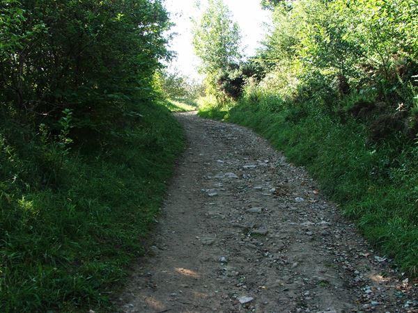 Image, UK, England, Derbyshire, Skegby Trail