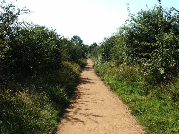 Image, UK, England, Notts, Skegby Trail