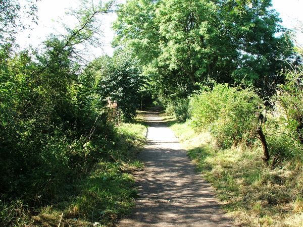 Image, UK, England, Notts, Link Trail (Pleasley Trails Network)