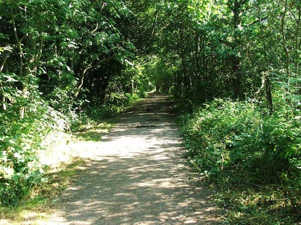 Image, UK, England, Notts, Link Trail (Pleasley Trails Network)