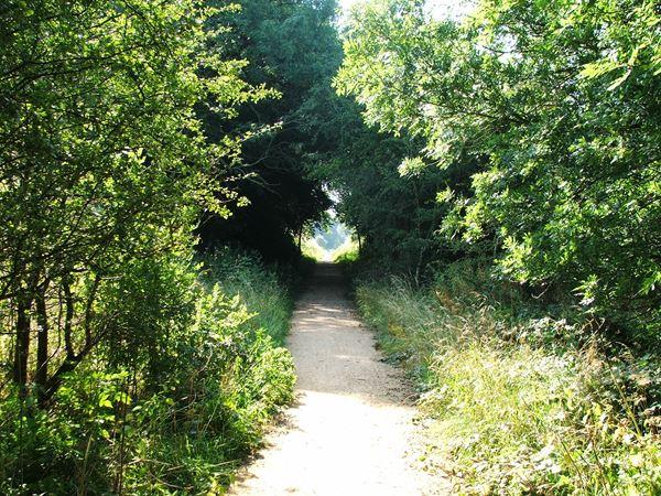 Image, UK, England, Notts, Teversal Trail (Pleasley Trails Network)