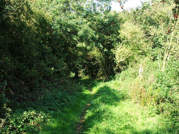 Image, UK, England, Derbyshire, public foot path Greer Lane