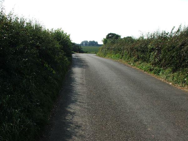 Image, UK, England, Derbyshire, the North border of the Houghton Bassett