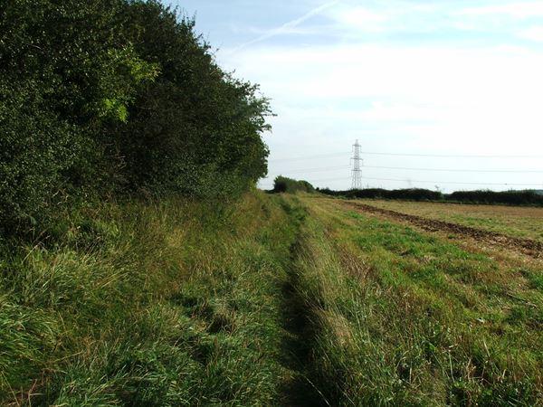 Image, UK, England, Derbyshire, Archaeological way near Roseland Wood