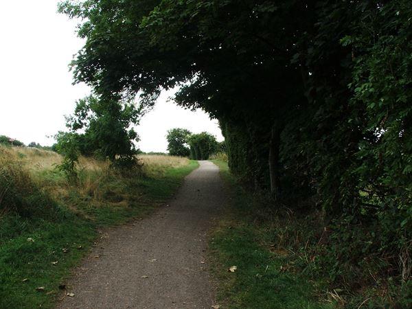 Image, UK, England, Derbyshire, Tibshelf