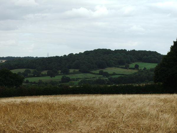Image, UK, England, Derbyshire, Astwith